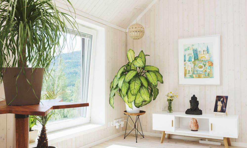 Interiérový dřevěný obklad prkny